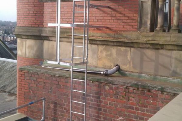Roof Access Metal Ladder